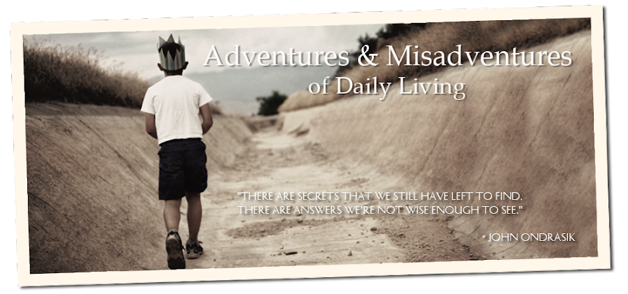 Adventures &amp; Misadventures of Daily Living