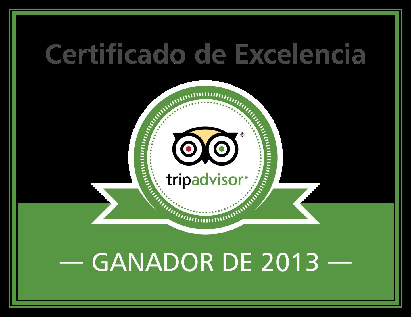 CERTIFICADO DE EXCELENCIA 2013
