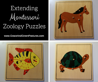 Extending Zoology Puzzles