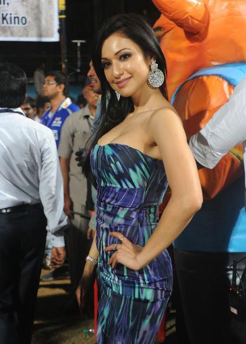 madhuri bhattacharya at ccl hot photoshoot