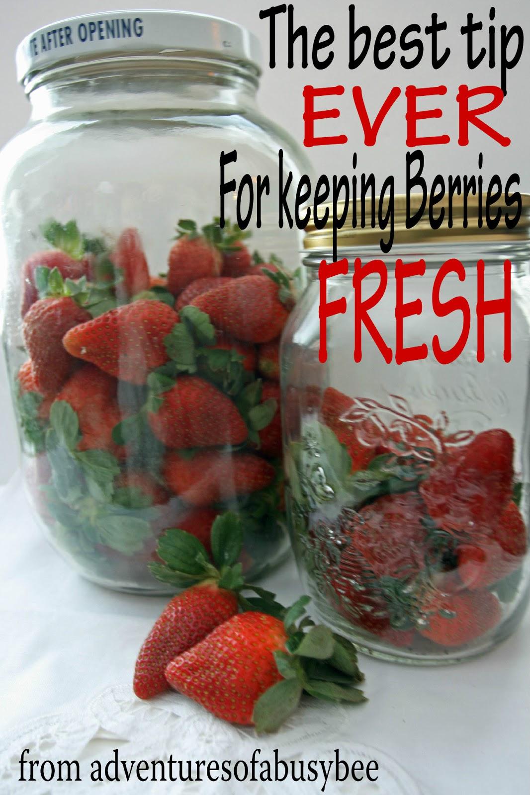Keeping Berries Fresh!!
