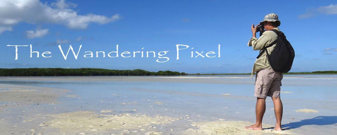Wandering Pixel