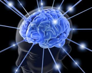 Imagem de Cérebro Dentro da Cabeça