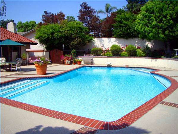 New home designs latest modern swimming pool designs ideas for Swimming pool layouts and designs