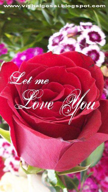 Beautiful Rose Flowers With Friendship Quotes
