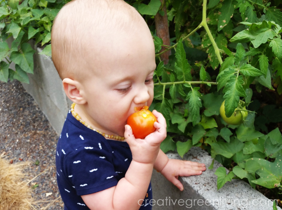 how to get your kids to eat fruits and veggies