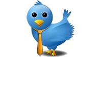 twitter, twitter logo, twitter fenomen, twitter kullanımı, twitter kuş, twitter png, twitter logo png, twitter hilal cebeci
