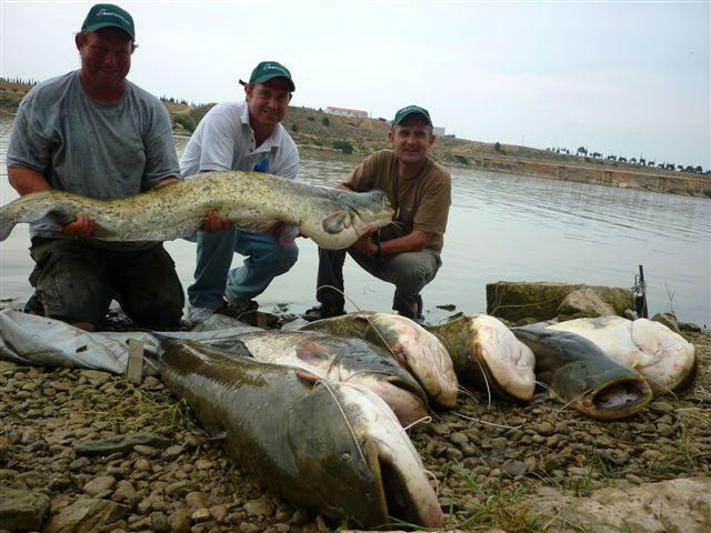 Spanish ibex hunts ibex hunting in spain ibexhuntspain for Fishing rod in spanish