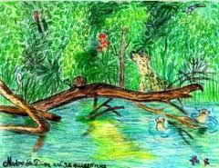 Conservación Biodiversidad