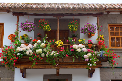 Fachada de una casa con muchas flores de colores