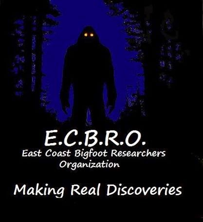 bigfoot research organization