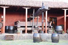 EXPOSICIÓN EN LA  CASA DEL VINO DE TENERIFE