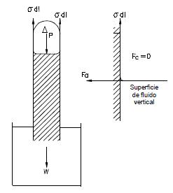 tubo capilar de longitud L y diámetro D dibujo ejercicio 6
