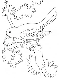 Sad Cuckoo Bird Sitting On A Branch Coloring Pages