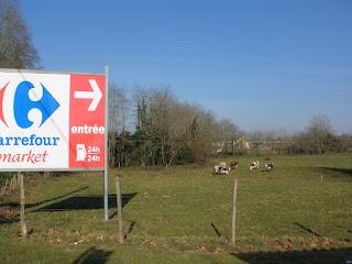 vacas Carrefour