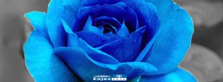 اغلفة فيس بوك ورود وأزهار رائعة ,ومميزة وجميله جدااا :: flowers facebook covers