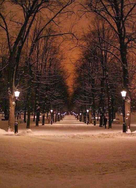 Humlegården Park at Night - Sweden
