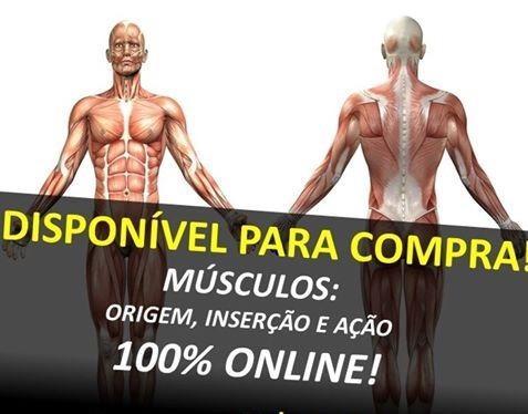 """Curso """"Músculos: origem, inserção e ação"""""""