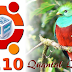 How To Install Ubuntu 12.10 (Quantal Quetzal) Using VirtualBox [Beginner's Tutorial]