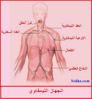الجهاز الليمفاوي Lymphatic System