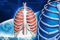 Tubersulosis - Tratamientos Naturales