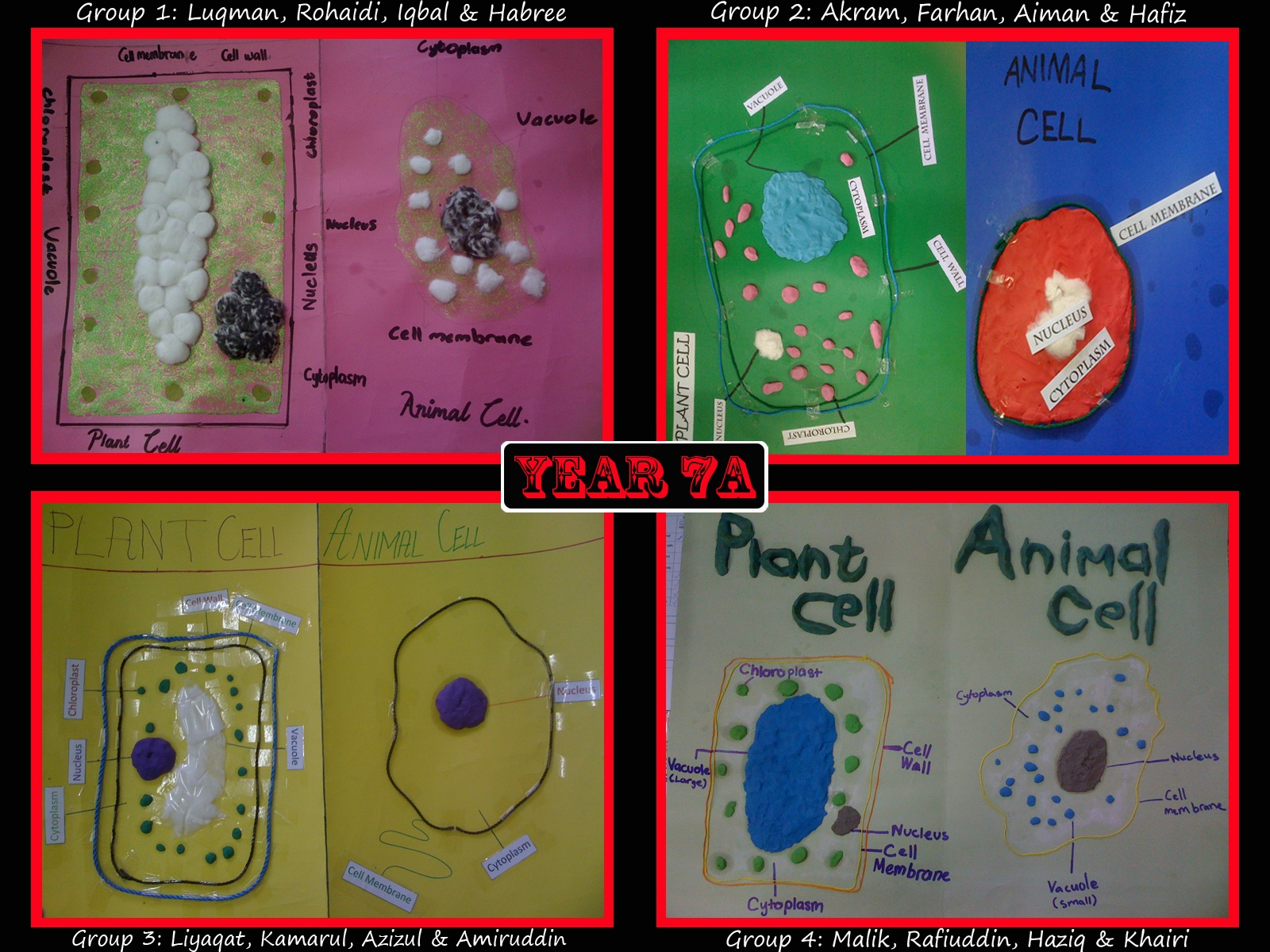 Science4Geeks: Plant and Animal Cells