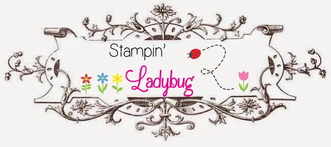 Stampin Scrappin Ladybug