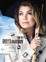 Serie Greys Anatomy 8x10