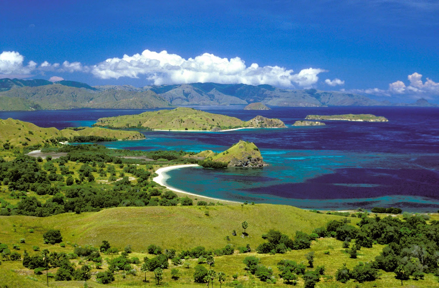 Since the komodo national park was established, the population of