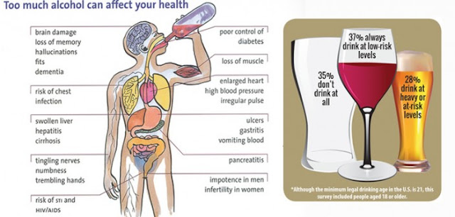 effects of alchohol on your organs