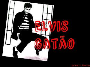 Elvis Gatão