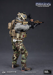 Damtoy 1/6 Scale Elite Series MARSOC Marine Special Ops Team Operator figure