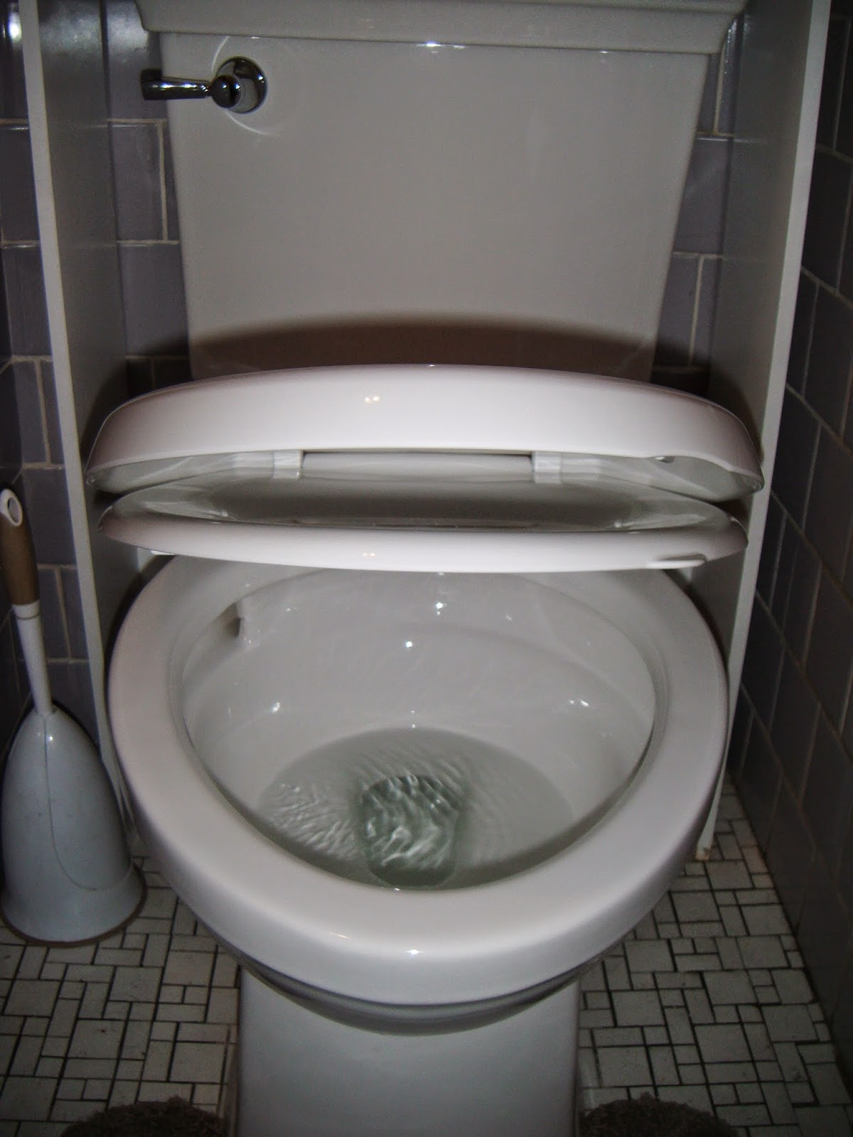 The ABCD Diaries American Standard Optum VorMax Toilet Delivers A Super Clea