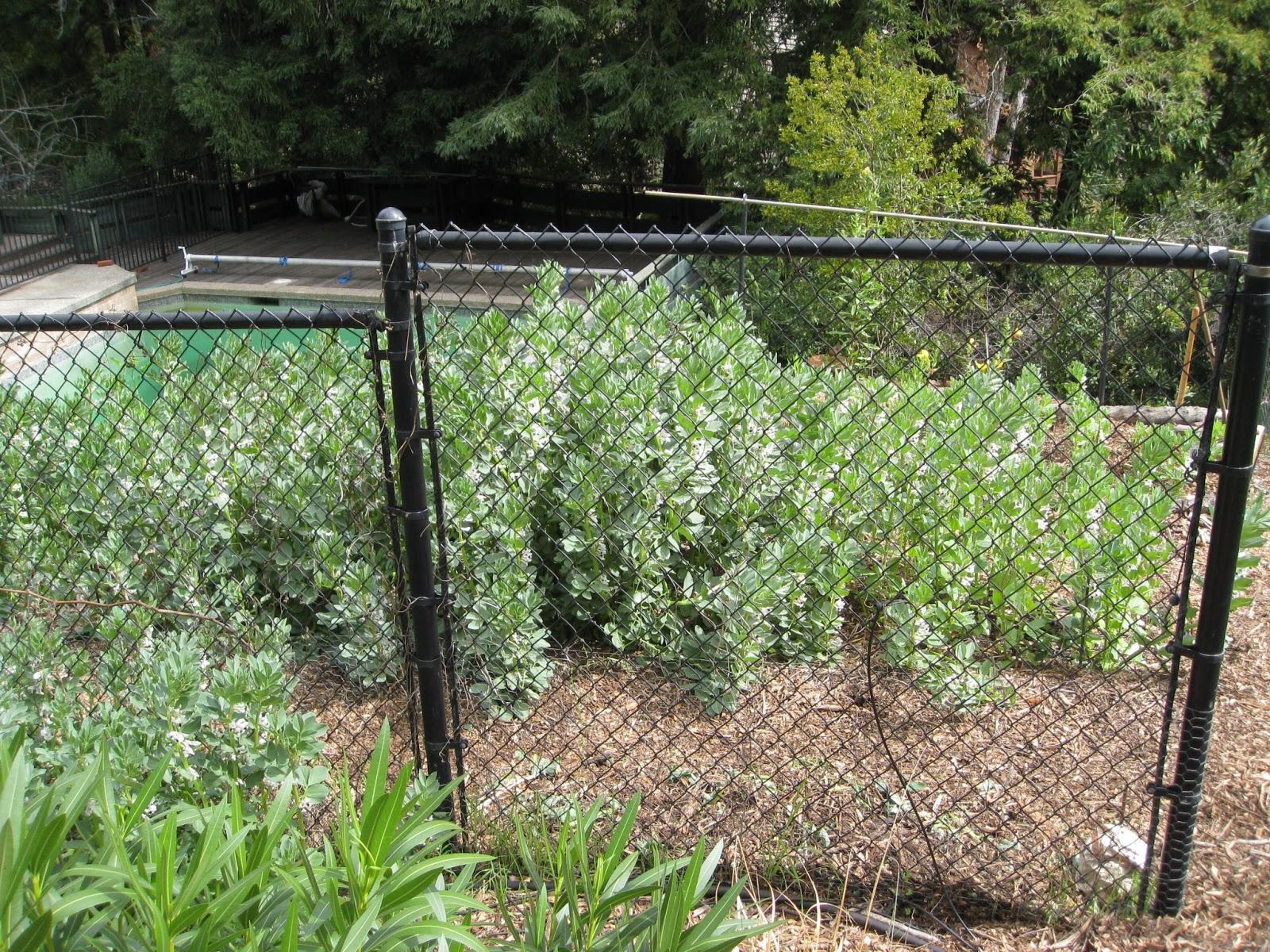 Low Cost Vegetable Garden Vertical Hugelkultur Wood