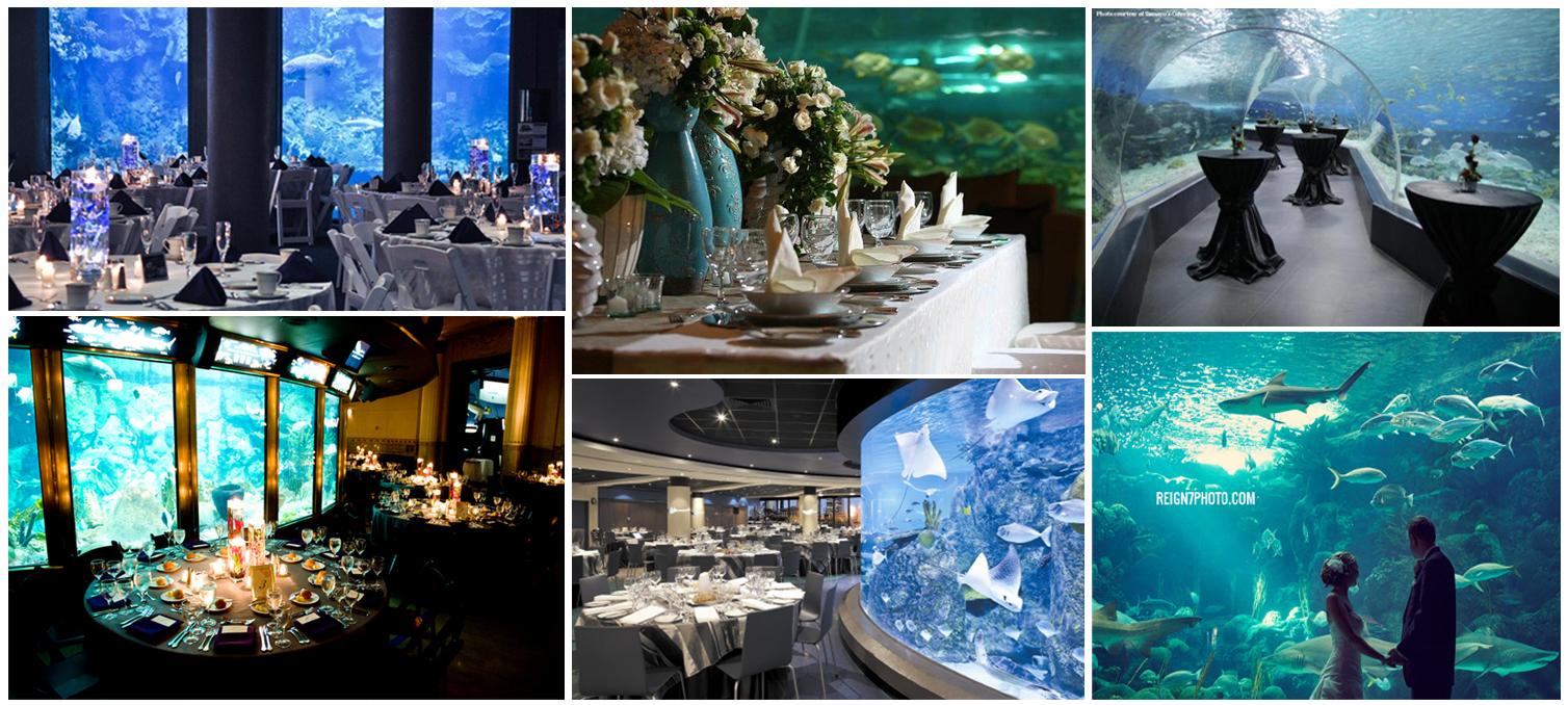 Always the bridesmaid 5 unique wedding venues for Aquarium cocktail table