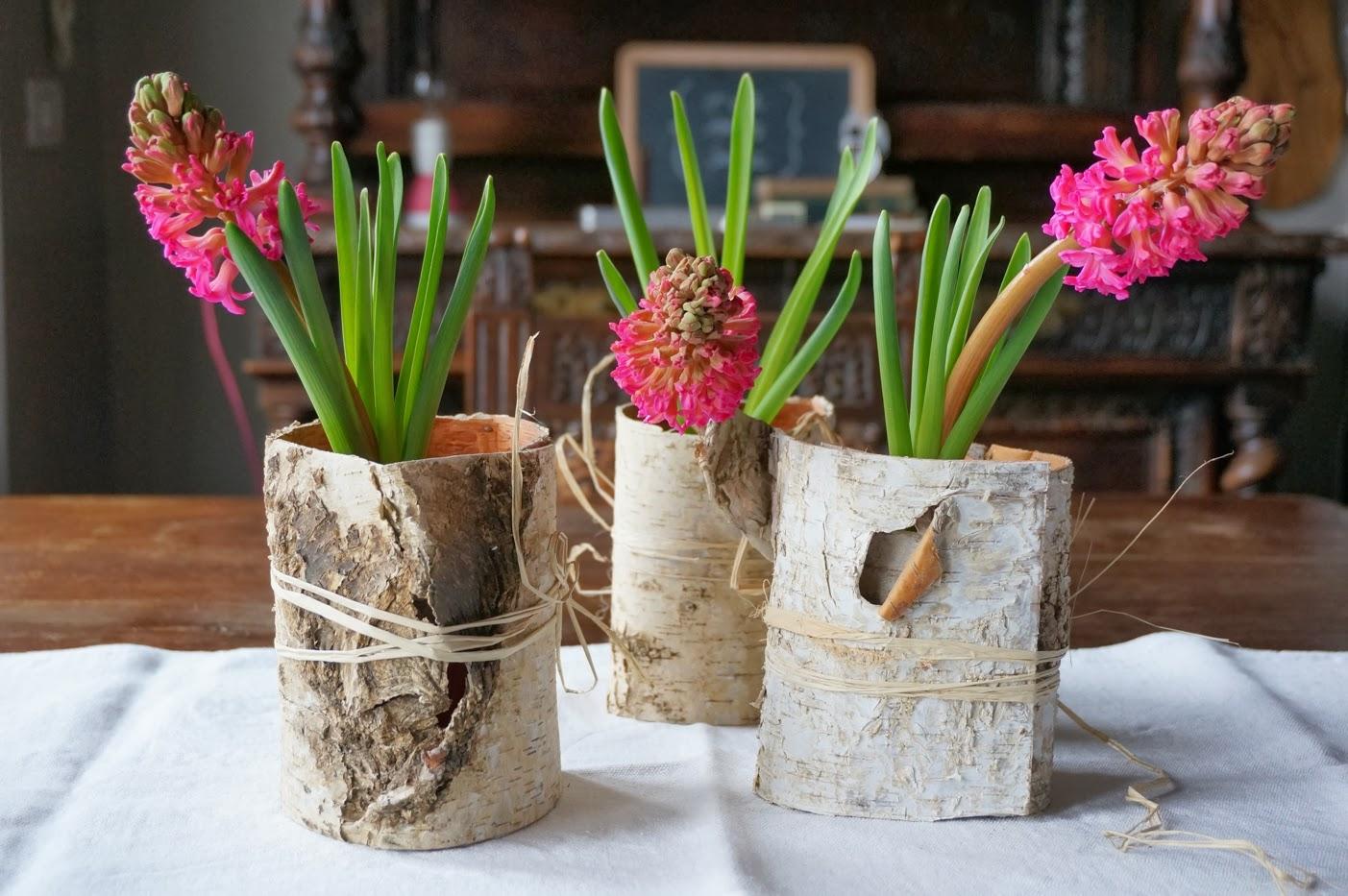 Decorazioni con i bulbi primaverili blossom zine blog - Giacinti in casa ...