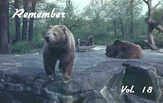 V.A. – Remember 18
