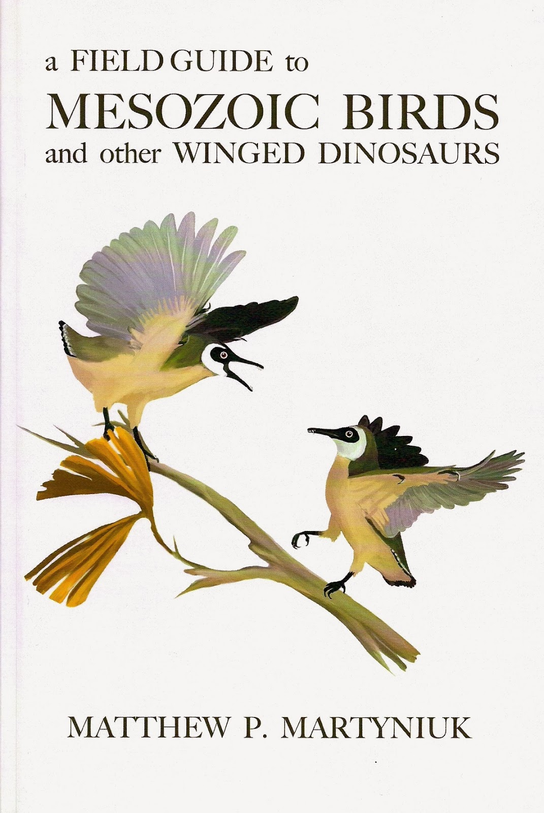 Tempi profondi febbraio 2013 palaeoart interview 2 matt martyniuk a field guide to mesozoic birds and other winged dinosaurs fandeluxe Choice Image