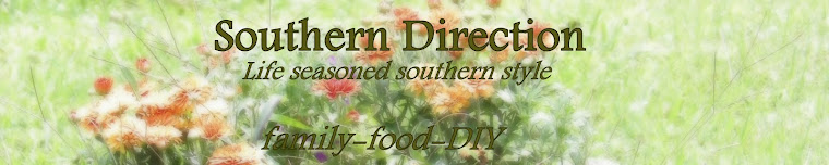 Southern Direction: Places to Go, People to See, Treasures to Find