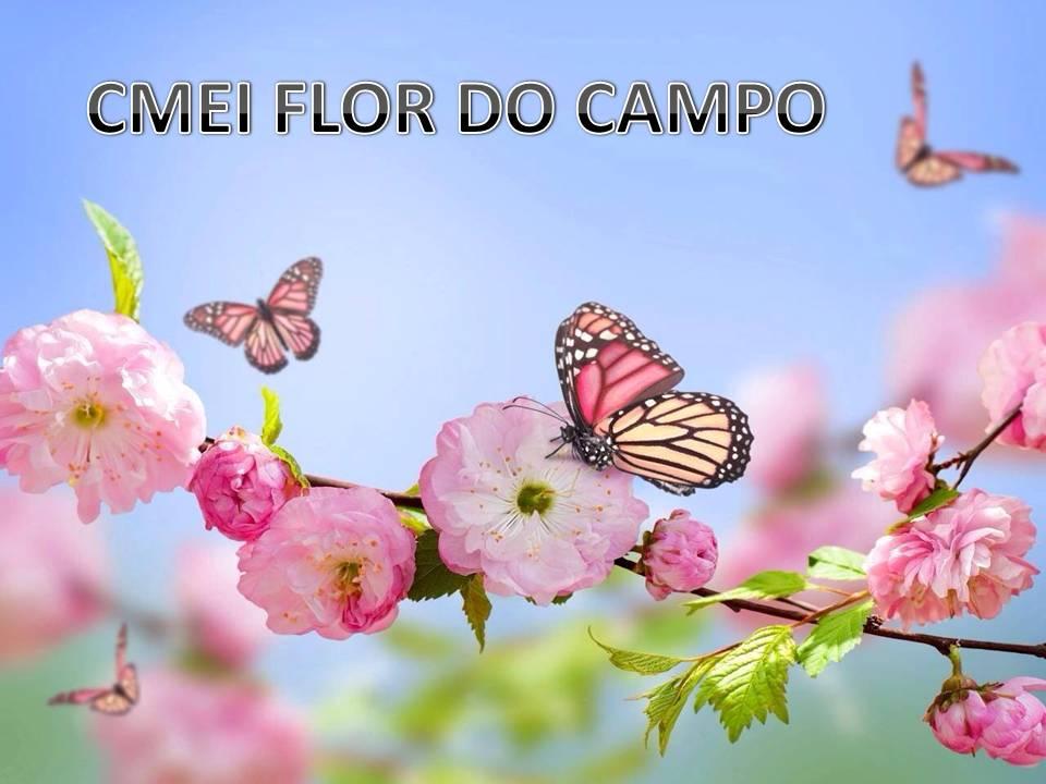 CMEI FLOR DO CAMPO