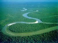 sungai yg terpanjang di papua adalah sungai  Mamberamo