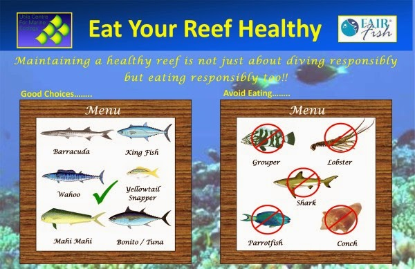 Seafood restaurants know your seafood for What fish is healthy to eat