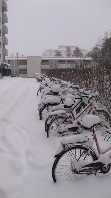 polkupyöräily lumessa