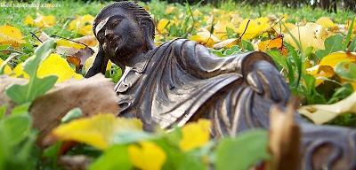 cuento-zen-buda-en-la-hierba