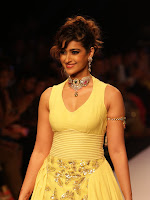 Ileana Ramp Walk Stills at IIJW 2015-cover-photo
