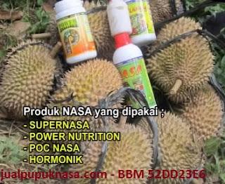 Kesaksian Produk NASA pada tanaman Durian