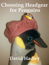 Choosing Headgear for Penguins