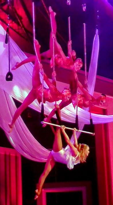 Cirque Sensation