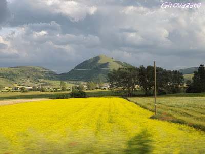 giallo Piceno