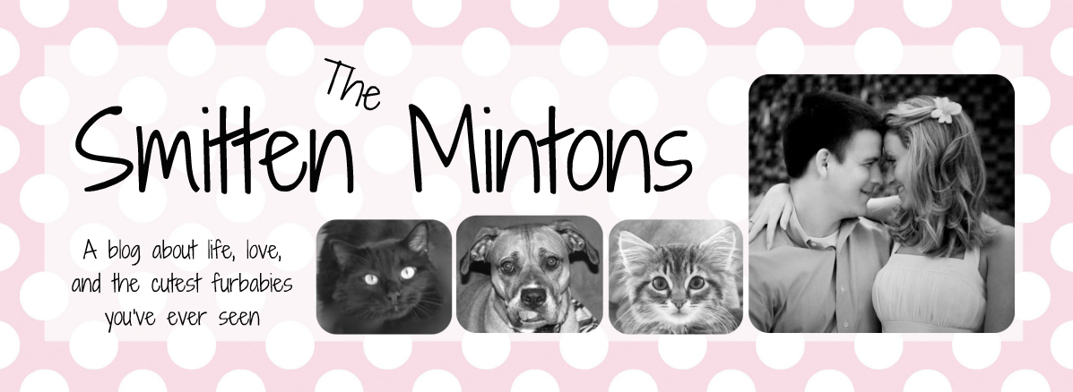 The Smitten Mintons
